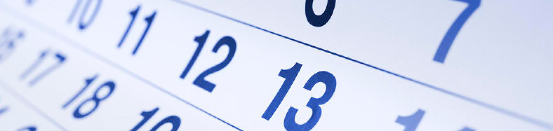 3D University Calendario Corsi
